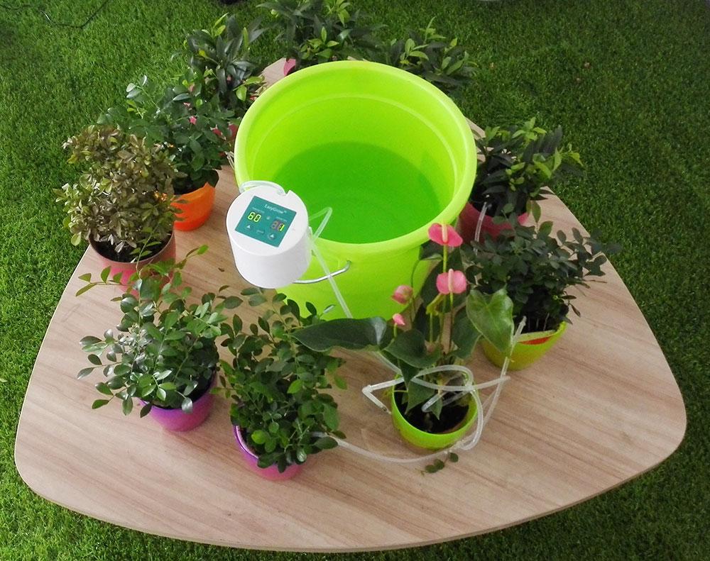 Система полива своими руками комнатных растений 268